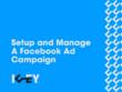 Setup and manage a Facebook Ad campaign