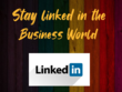 Create, manage linkedin profile & business page within 24 hrs