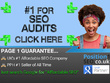Top SEO ANALYSIS - Over 20 in-depth reports - UKs #1 SEO