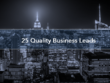 Provide you with 25 Quality Business Leads from any sector