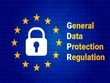 Provide Terms and Conditions or GDPR Privacy Policy