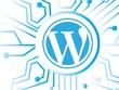 Build Responsive, SEO Optimized & Fast Loading WordPress Website