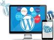 Develop wordpress website with SEO & customization