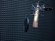 Record a voice over of 100 words