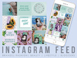 Design you a starter package for your social media feed