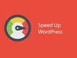 Optimize wordpress google page insight and gtmetrix 24 hours