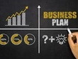 Business plan The 5 of year projected profit and loss