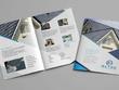 Design a professional quality brochure