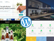 Create your perfect starter WordPress website