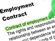 Create or update an Employment Contract