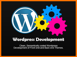 Provide Wordpress Development / Developer