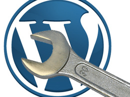 Perform Wordpress maintenance