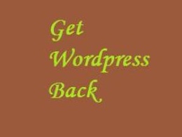 Remove your wordpress cms site error or recover from blank page after recent changes