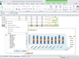Create professional Excel 2010 spreadsheets