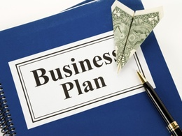 Write you a professional business plan