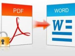 Convert pdf to word (unlimited pages)