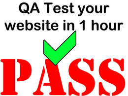 QA Test your website & submit a defect report