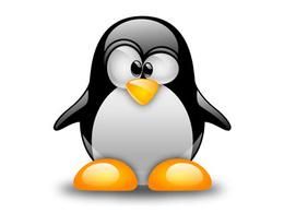 Setup Linux Web Servers LAMP