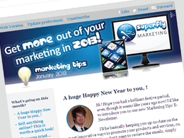 Design and set up an E-Newsletter system for your business
