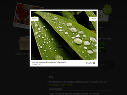 Add popup image gallery for your website