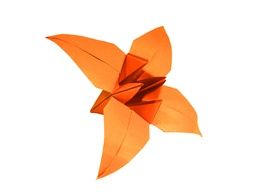 Make and deliver a box of paper folding flowers