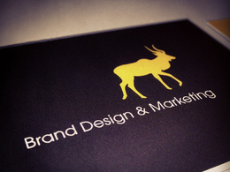 Design your stationary pack (Letterhead, comp-slip, envelope, business cards)