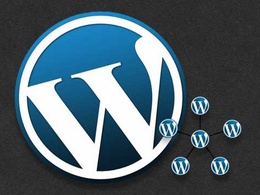 Setup & install your wordpress multisite website