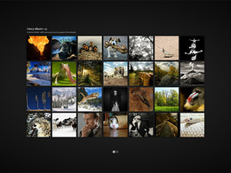 Develop a professional image gallery for your website or business