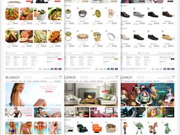 Develope a wordpress e-commerce website