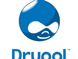 Make minor tweaks and fixes to your Drupal / Wordpress website