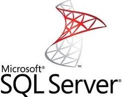 Write SQL programs for you
