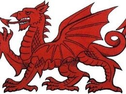 Translate English/Welsh up to 500 words
