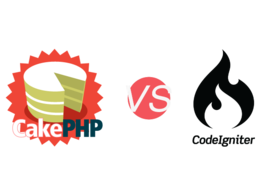 Provide one hour cakephp or codeigniter framework development