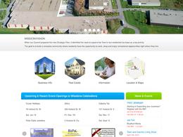 Design a very professional and elegant website design of your website
