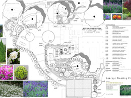 Create a planting plan for your landscape