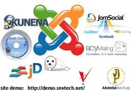 Build your profossional Joomla website