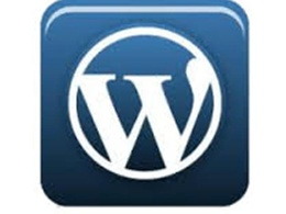 Create upto 20 pages/posts on your wordpress site/blog