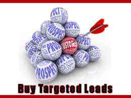 Provide you with 500,000 verified email leads