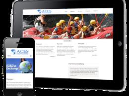 Build a full feature bespoke Wordpress website