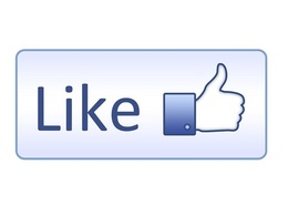 Add 1000 genuine Facebook likes to boost your SEO and Social Media presence