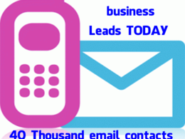 Provide you with 40 thousand active email accounts