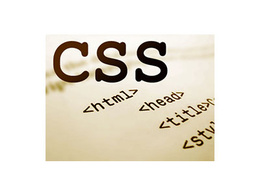 Fix your CSS related issues or change the look of your website