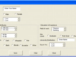 Create a single excel userform of your design choice