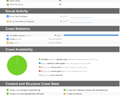 Provide a website audit report on SEO and social media factors