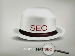 Manually create authority 50 PR9 backlinks, profiles and social signals