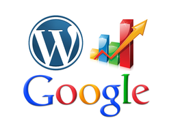 Provide professional SEO services on your Wordpress website to incease your rankings