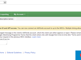Audit your Google Adwords PPC account & give you advice on how to fully optimize it