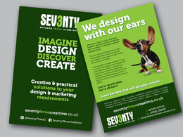 Design you a marketing leaflet or poster