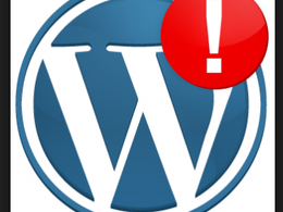 Detect and resolve your Word press errors, blogs, HTML, Plug ins, CSS & Social media.