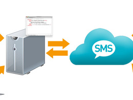 Develop bulk SMS website